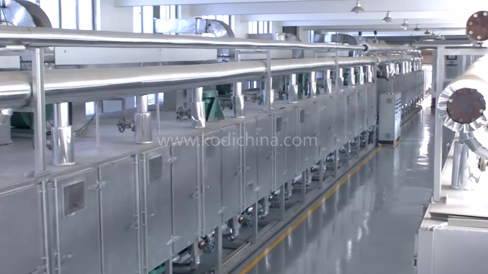 DW Series Continous Industrial Mesh Belt Conveyor Dryer Machine
