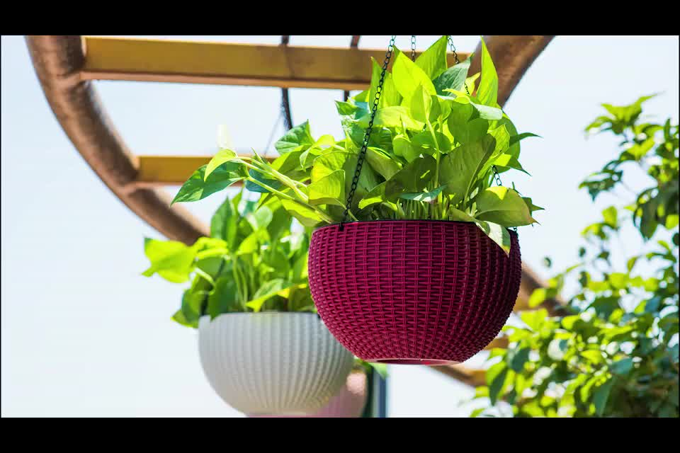 Kunststoff stecker regale vase zelle blumentopf rechteckigen garten sämling regal für verkauf samen großhandel gärtnerei tablett