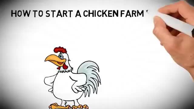 Çin en iyi tedarikçi çelik çerçeve katman yumurta tavuk kafesi kümes hayvanları çiftlik inşaat ev tasarımı Kenya
