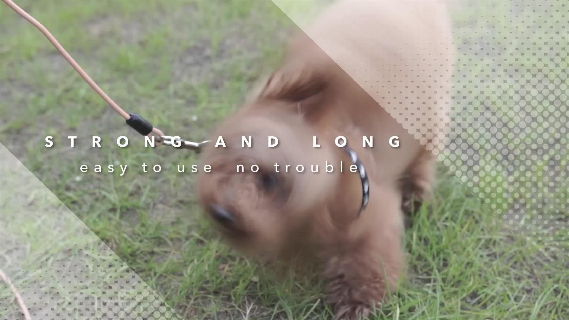 عالية الجودة سلك حبل البلاستيك المغلفة كلب التعادل خارج كابل