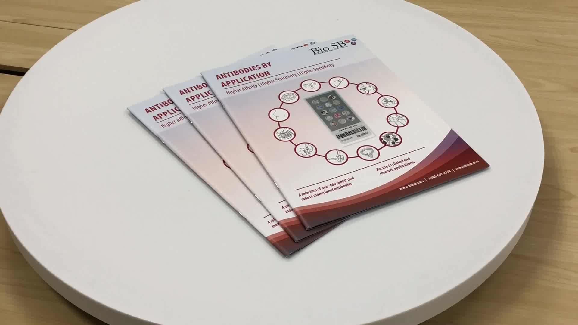 Feitos sob encomenda baratos serviços offset flyer impressão do folheto da empresa