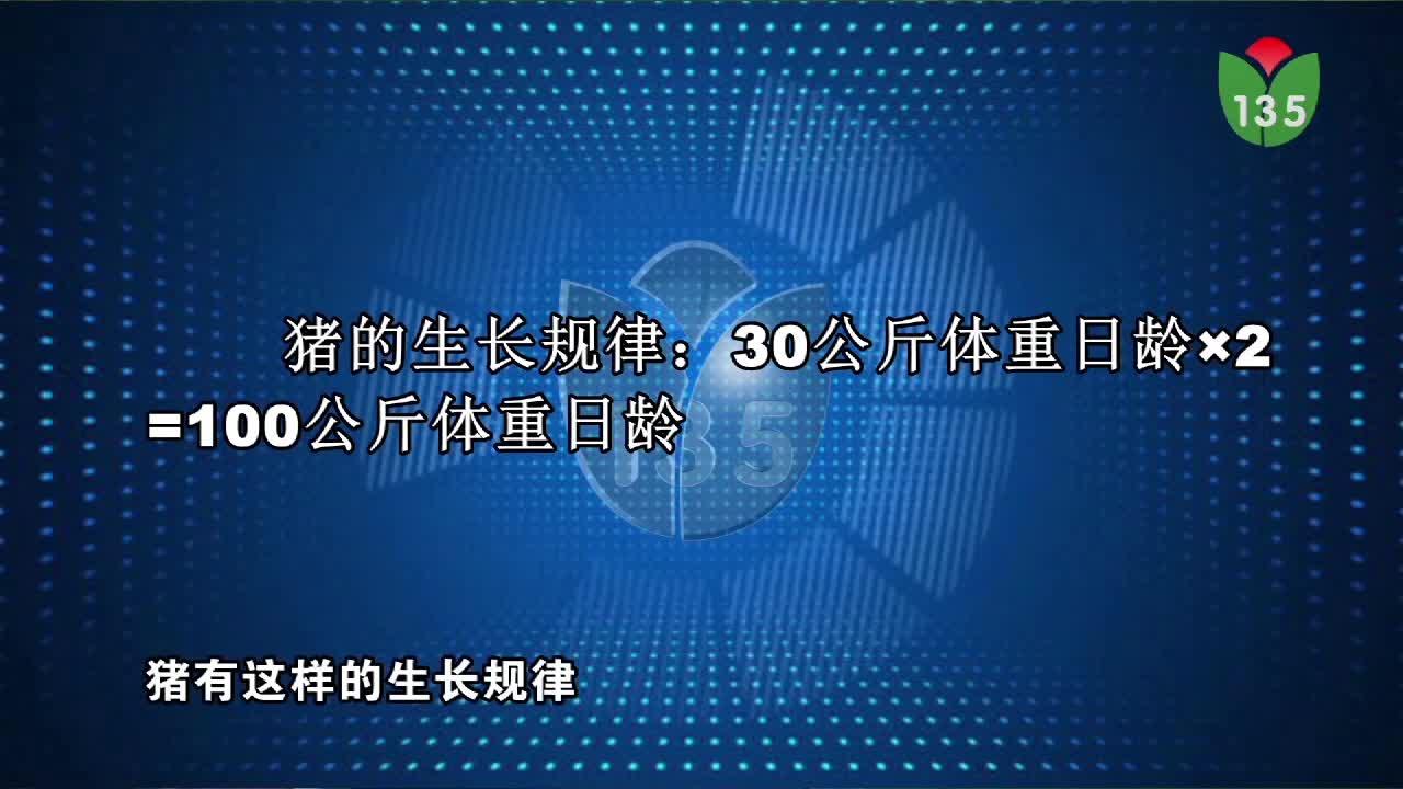 视频:仔猪黄白痢保健方案(梁宁)