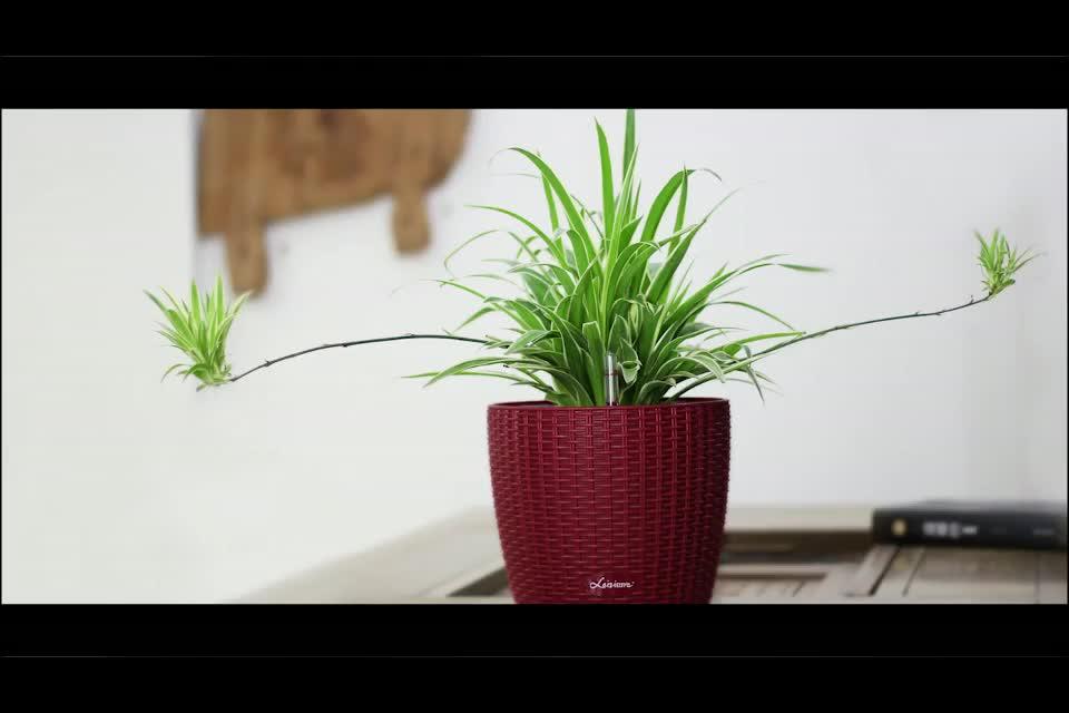 Leizisure Günstige Große Größe Kunststoff Dekorative Keramik Pflanzer Anlage Töpfe Big Glasierte Outdoor Blumentöpfe für Baum