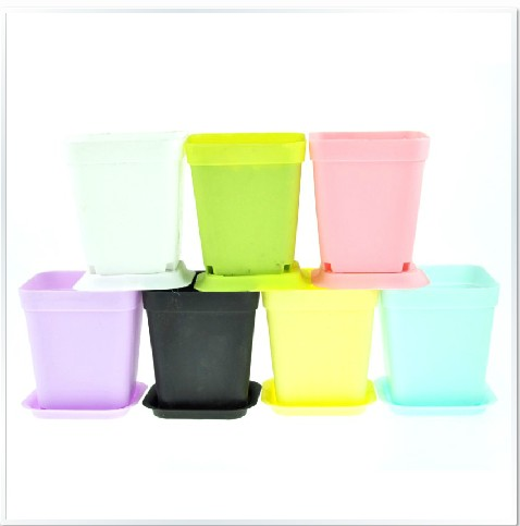 special 7 Color plastic flowerpots color small square flower pots mini-meat pots stylish simplicity, and basin
