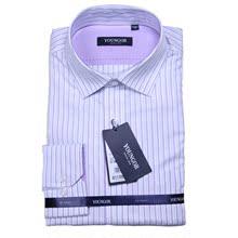 新款正品雅戈尔男士休闲全棉免烫衬衫男式长袖条纹衬衣DP14169-32图片