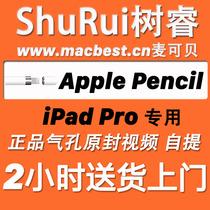 适用于iPad Pro的Apple Pencil,苹果笔,原封,港行,国行