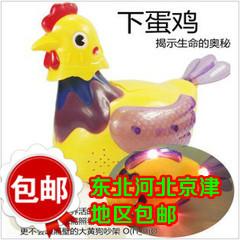 Электронная игрушка для детей 大号万向轮电动生蛋鸡 母鸡下鸡 音乐电动玩具