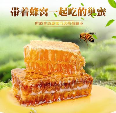 巢蜜蜂蜜纯正天然农家自产蜂巢蜜老蜂巢蜂窝新疆野生土蜂蜜嚼着吃