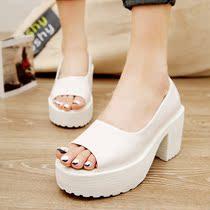 2013夏季新品 时尚日系粗跟防水台鱼嘴女式凉鞋 新款女鞋高跟单鞋