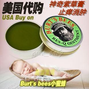 Burt's bees  Burt's Bees 15g