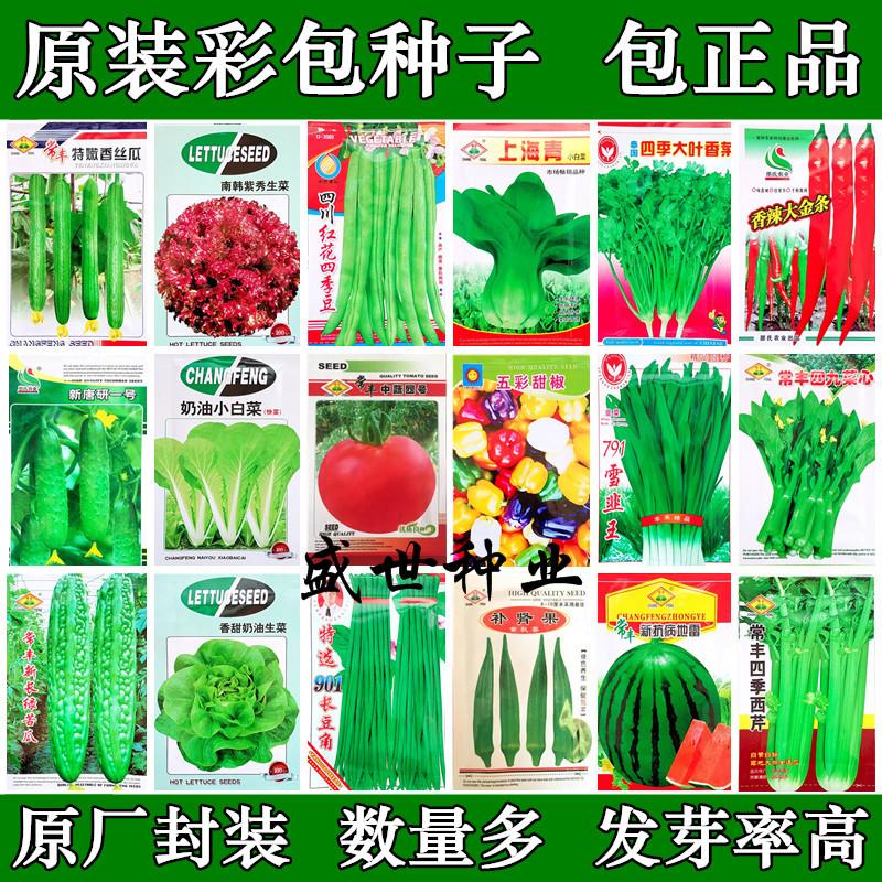 四季播原装蔬菜种子地种 阳台 水果种子 家庭菜籽 盆栽
