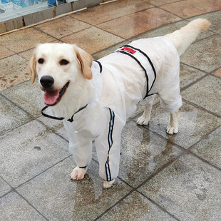 狗狗雨衣四脚防水全包宠物大狗拉布拉多狗衣服中型大型犬金毛雨披