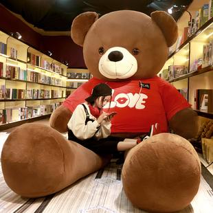 大熊毛绒玩具女生日泰迪熊熊猫公仔玩偶抱抱熊大号布娃娃可爱礼物