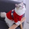 外套猫咪冬天衣服圣诞节白色帅气ins黑色秋冬季幼猫舒适冬款毛衣
