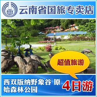 云南旅游 西双版纳野象谷 原始森林公园四日游 超值旅游