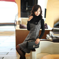 Sweet winter dresses new style slim Korean ladies ' Barret vest skirt base skirt T1286