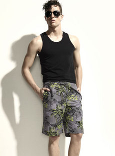 Dream Basha men's swimwear new 2012 hot passion of Hawaii Beach pants 013412213