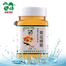 蜂献 菊花蜂蜜 纯天然农家 自产野生土蜂蜜 蜂巢蜜【买2瓶送木勺
