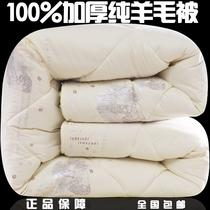 100正品澳洲羊毛被单人双人羊绒被子秋冬全棉加厚保暖被芯特价