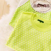 特价新款 撞糖果色插肩袖设计波点套衫女针织衫