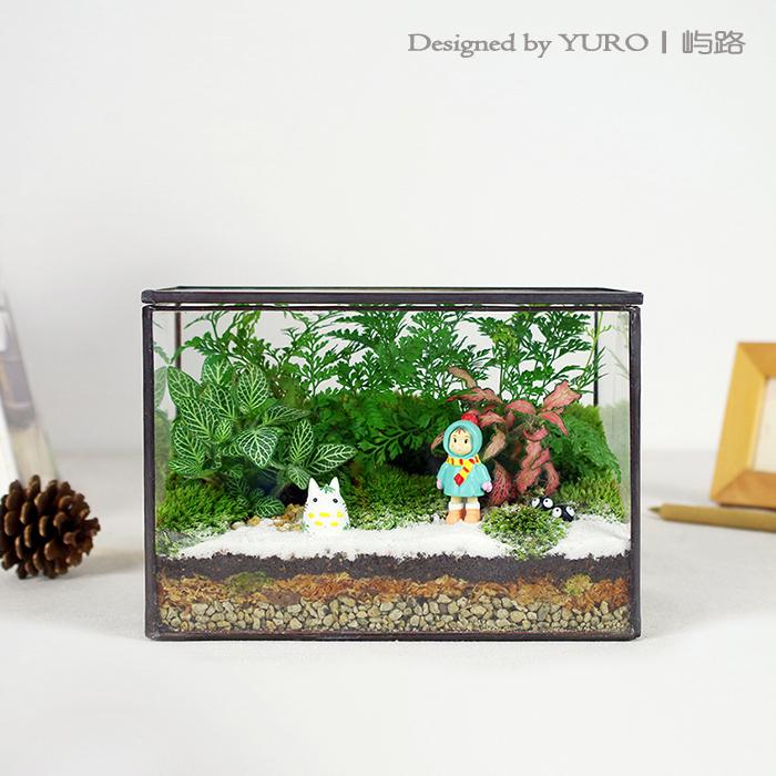 七夕礼物屿路苔藓微景观植物绿植盆栽DIY办公室桌面摆件顺丰包邮