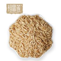 相思莲 燕麦米 农家燕麦 燕麦仁 粮油米面五谷杂粮粗粮500g