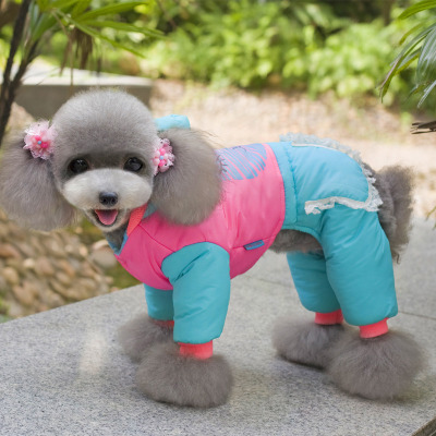 Princess paragraph dog clothes pet clothes Teddy Bichon puppy thick winter clothes coat crimson legs