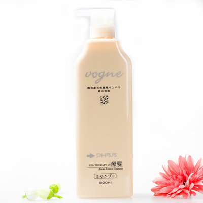 Authentic piano reduction acidic leaf oil control dandruff shampoo conditioner 800ml itching to oil Nourishing Shampoo