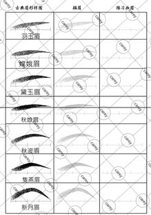 古典眉形练习图( 纸妆美人图 化妆手绘图 化妆模板 彩妆图纸)