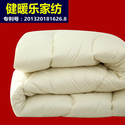 Double white goose down comforter winter is thick warm winter quilt duvet duvet core genuine special clearance