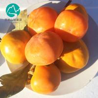 特价预售新鲜水果软甜柿子山东磨盘柿子5斤包邮生吃甜脆多汁不涩