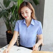 蓝色女士衬衫纯色短袖V领工装工作服长袖平纹衬衣面试上班