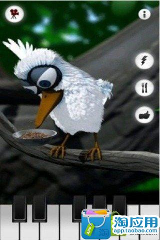 会说话的小鸟官方版