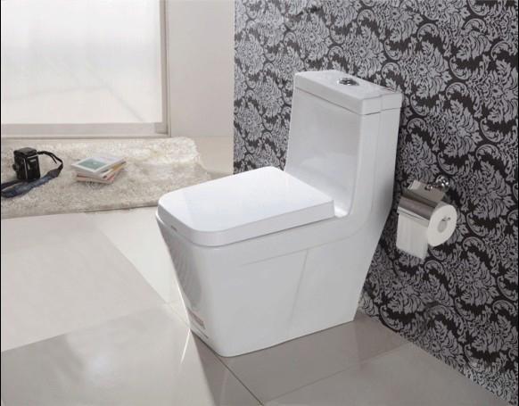 Унитаз электронный Bath front guards  838