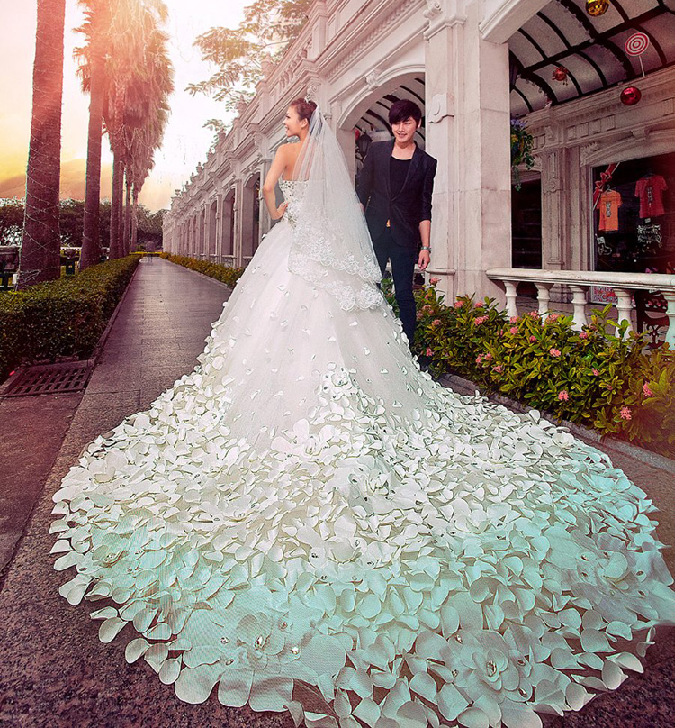 Free shipping most beautiful big long cathedral royal for Wedding dress long train