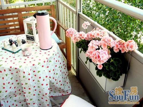 最佳阳台花卉之一——天竺葵的阳台应用 - 落霞·孤骛 - 落霞·孤骛的博客