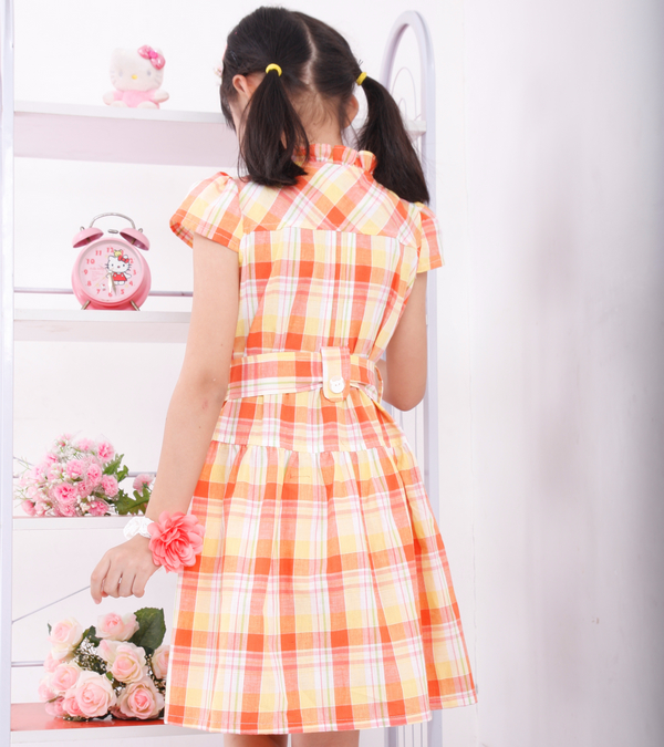 Baoyeah [Summer clearance 2012] Korean cotton plaid in the Princess skirt dress girls ' dresses children children
